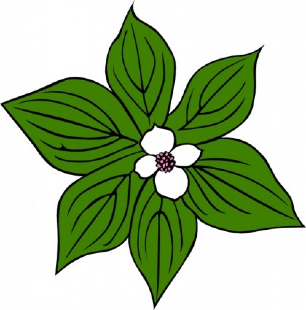 1011x1024 Green Flower Clip Art Free Vector In Open Office Drawing Svg Png