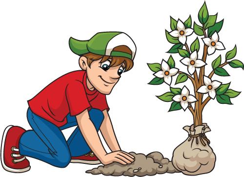 500x363 Boy Planting Dogwood