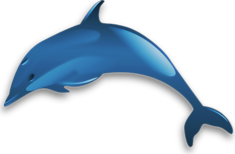 482x317 Collection Of Bottlenose Dolphin Clipart High Quality, Free