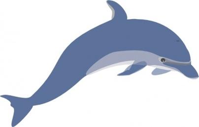404x259 Bottlenose Dolphin Clipart Sweet