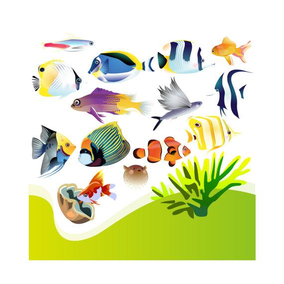 570x570 Aquarium Clip Art
