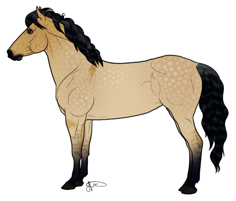 770x656 Icelandic Horse Foal Drawing Draft Horse Clip Art