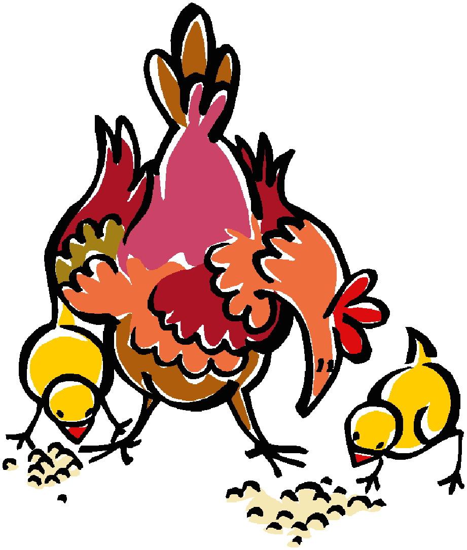 921x1085 Chickens Clip Art Farm