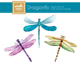 340x270 Dragonfly Clip Art Dragonfly Clipart Watercolour Digital