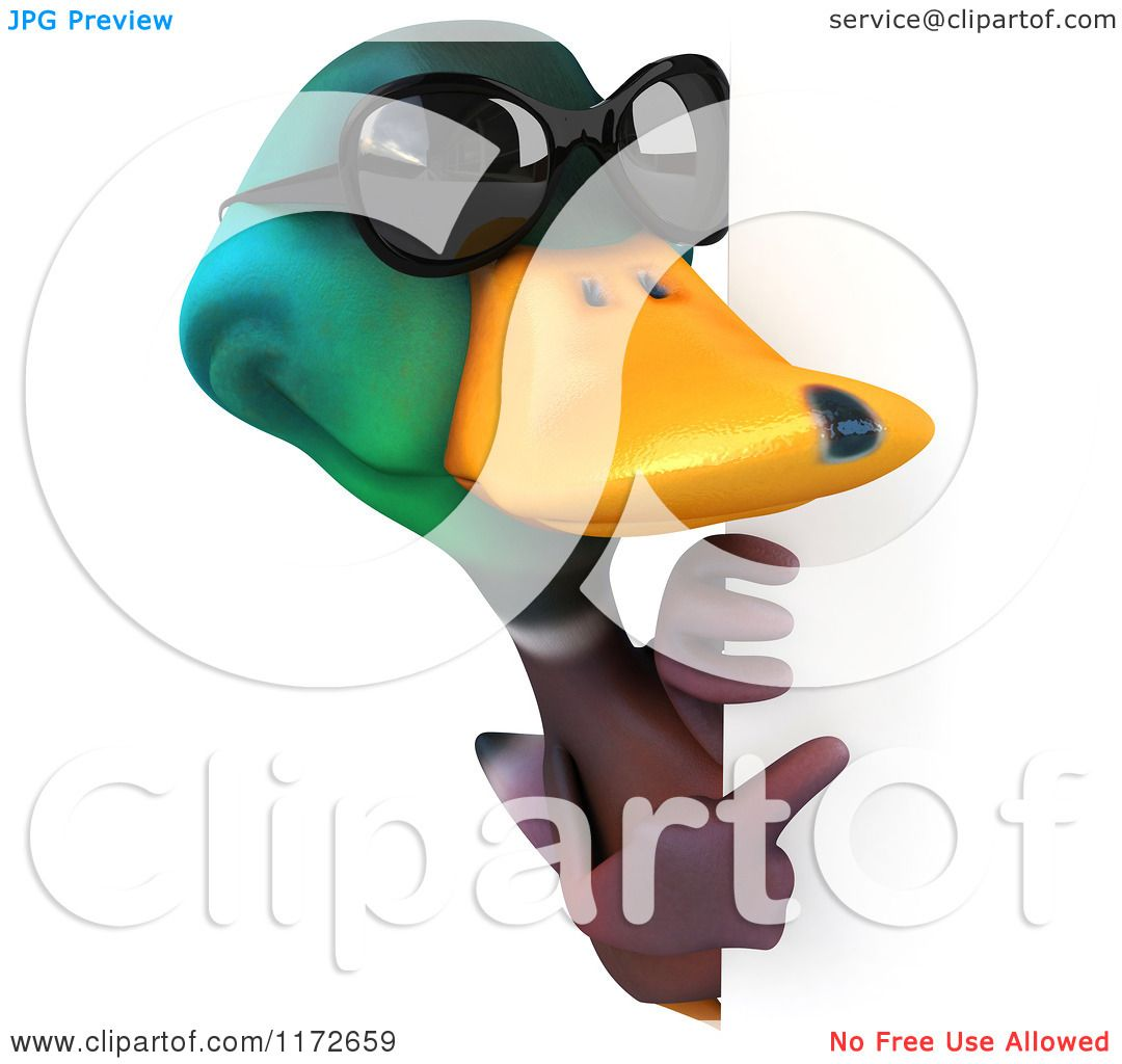 1080x1024 Clipart Of A 3d Mallard Drake Duck Wearing Sunglasses And Facing