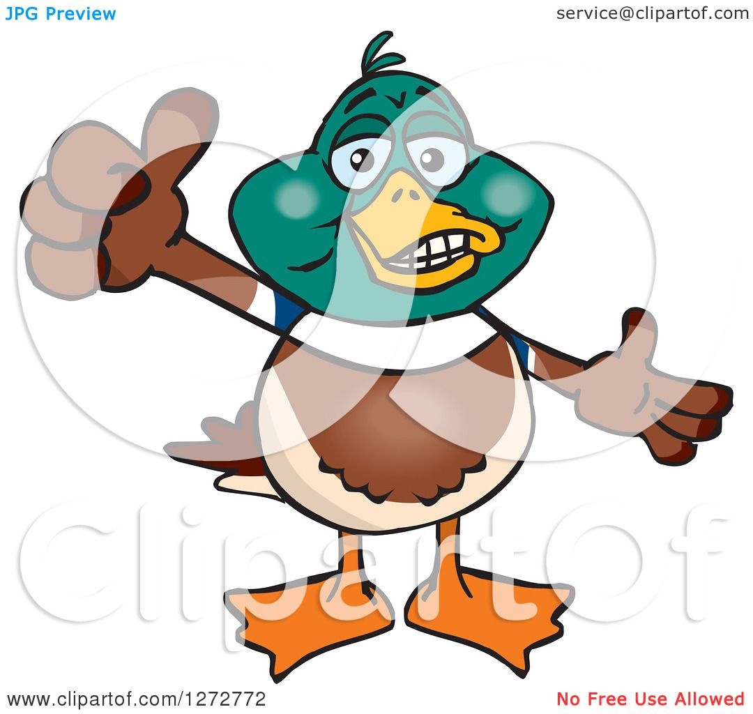 1080x1024 Clipart Of A Happy Mallard Drake Duck Giving A Thumb Up