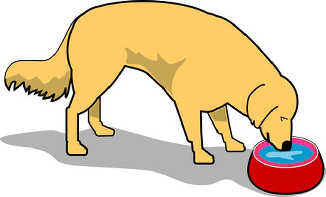 Drinking Water Clipart at GetDrawings.com   Free for ...