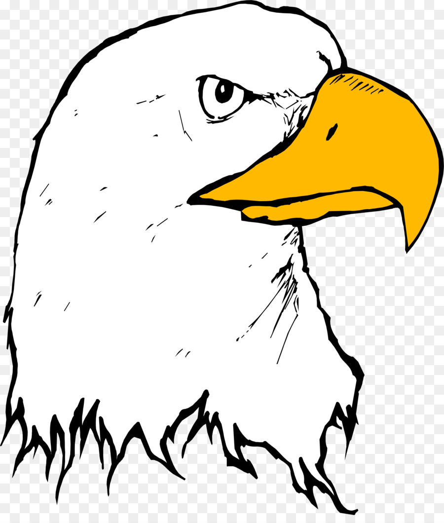 900x1060 Bald Eagle Beak Clip Art