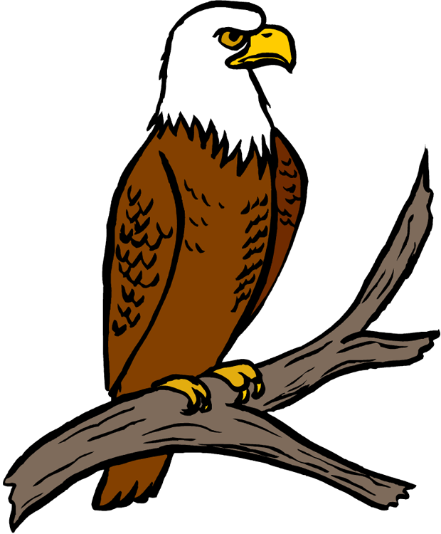 620x750 Clip Art Eagle Free Collection Download And Share Clip Art Eagle