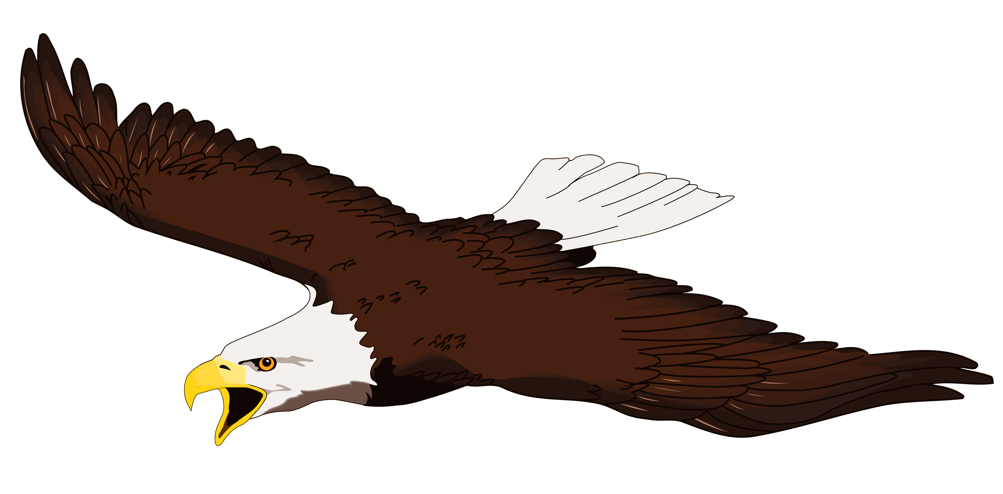 Eagle Feather Clipart At Getdrawings Com Free For Personal Use