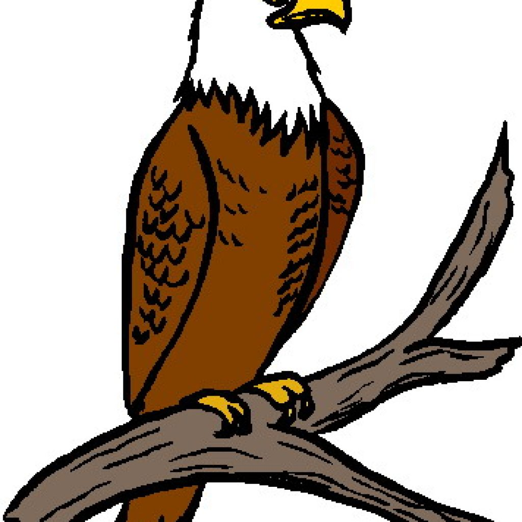 1024x1024 Free Eagle Clipart Frog Clipart