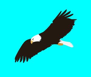 300x252 Soaring Eagle Clip Art