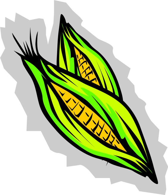 564x654 Corn Clipart Black And White Free Images