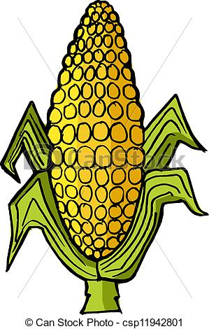 299x470 Hand Drawn, Vector Illustration Of Ear Of Corn Vector Clipart