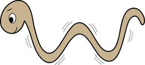 300x134 Interesting Idea Clipart Worm Free Earthworm Hanslodge Cliparts