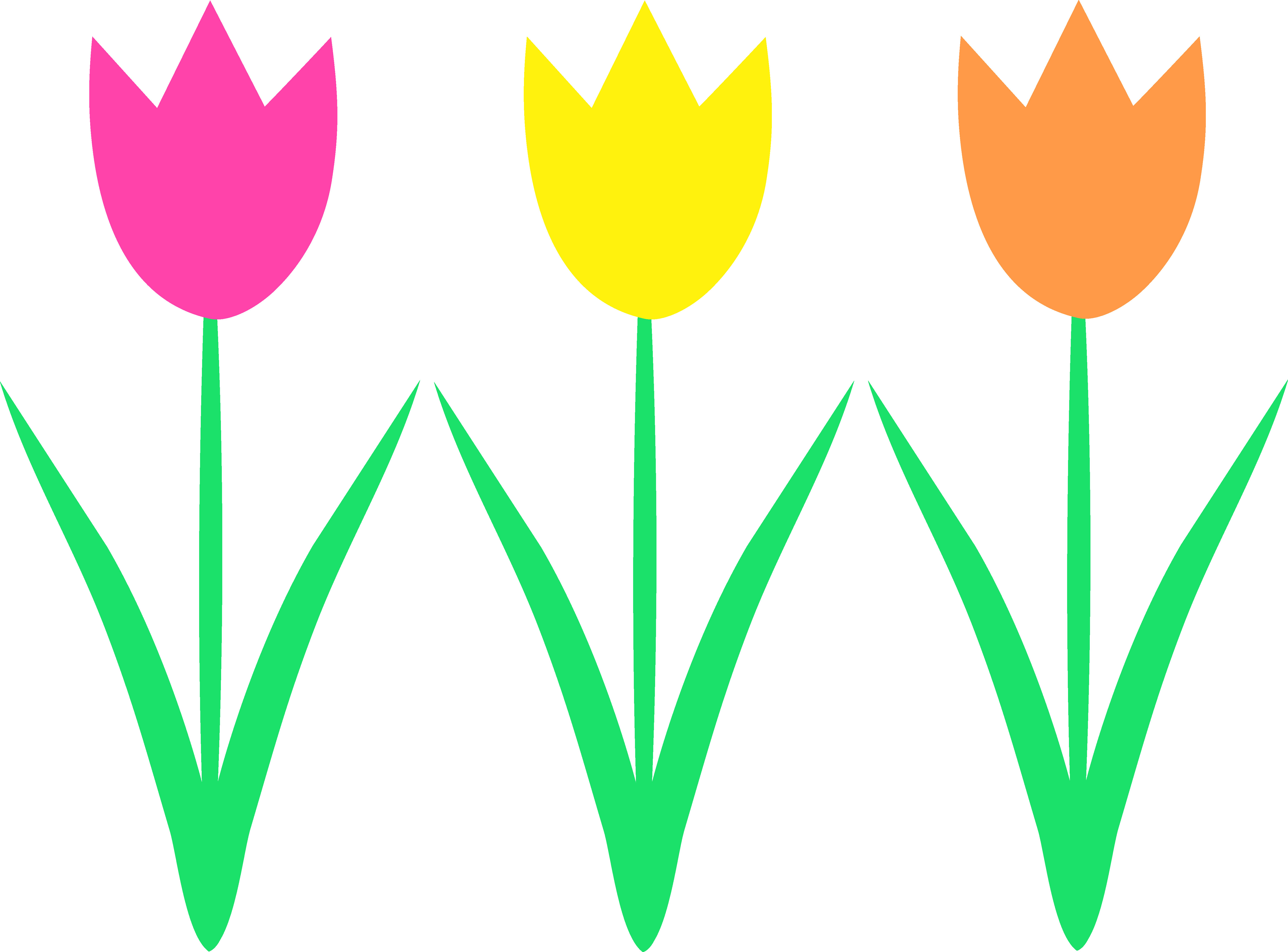 5627x4161 Free Clip Art Easter Flowers Tulips Clipart Image Clip Art