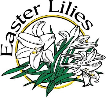 347x320 Easter Lilies Clipart Free Download Clip Art