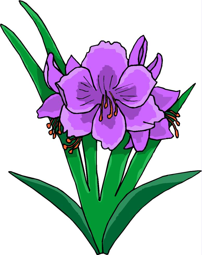 775x977 Easter Lily Clipart