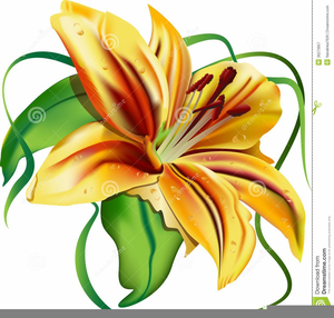 300x286 Clipart Easter Lilies Free Images