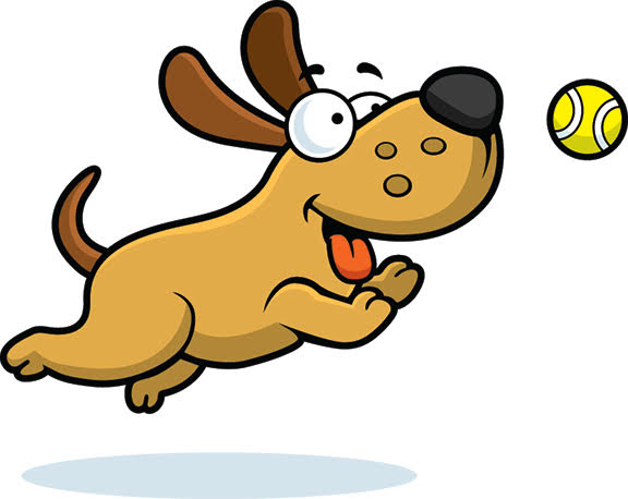 576x458 Doggy Daycare The Pet Patrol Dog Hotel