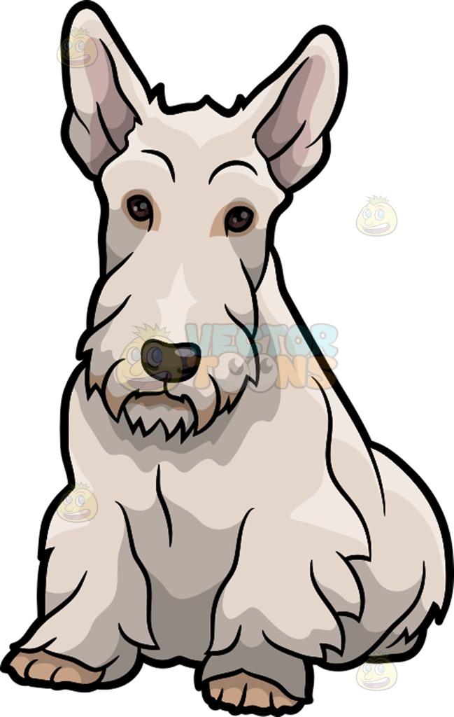 649x1024 Scottish Terrier Clipart Amp Scottish Terrier Clip Art Images