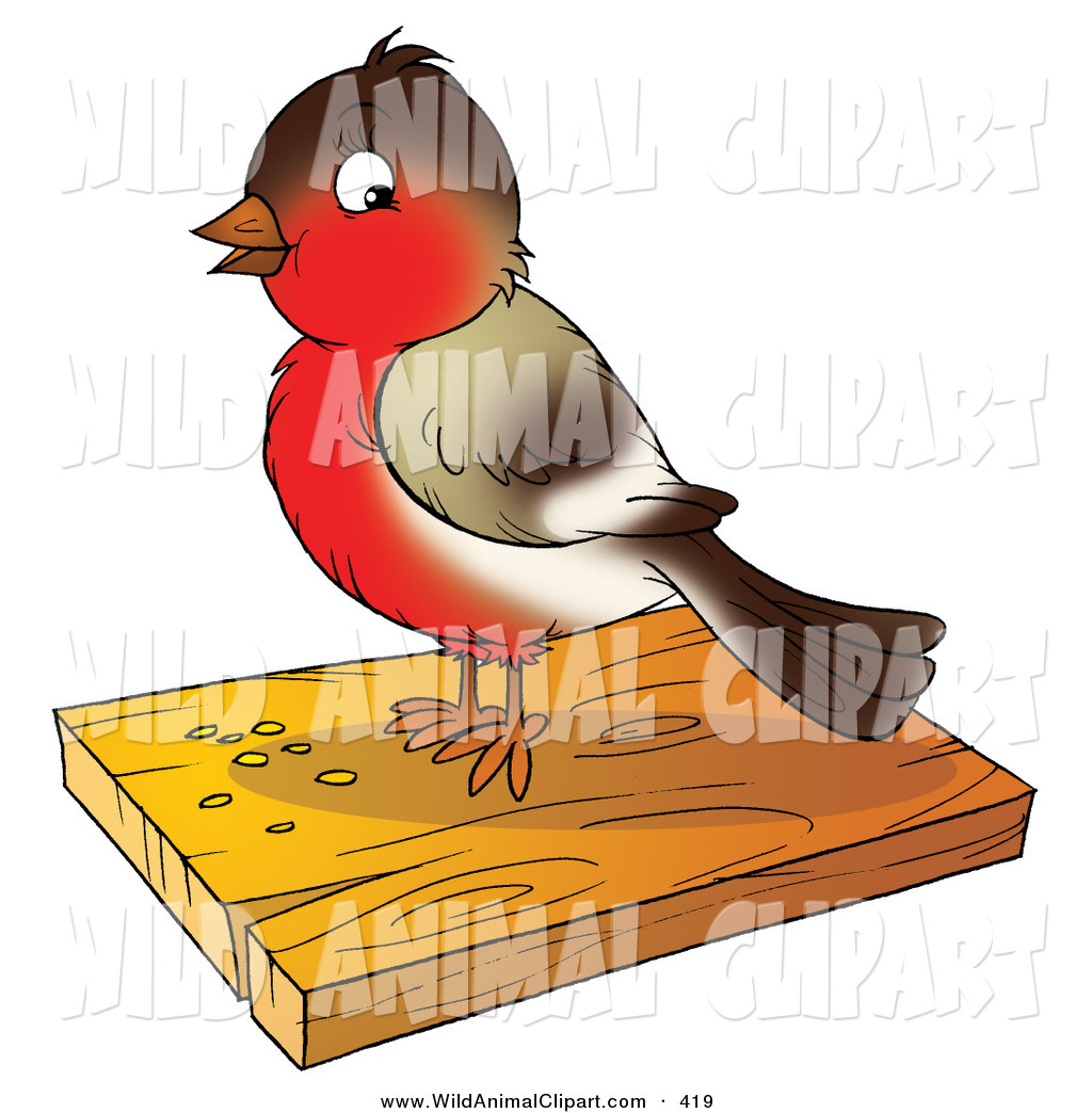 1024x1044 Cliprt Of Cute Brownnd Red Robin Bird Eating Seed On