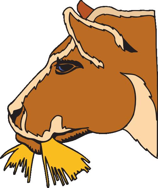 504x600 Pretty Design Hay Clipart Cow Eating Clip Art At Clker Com Vector
