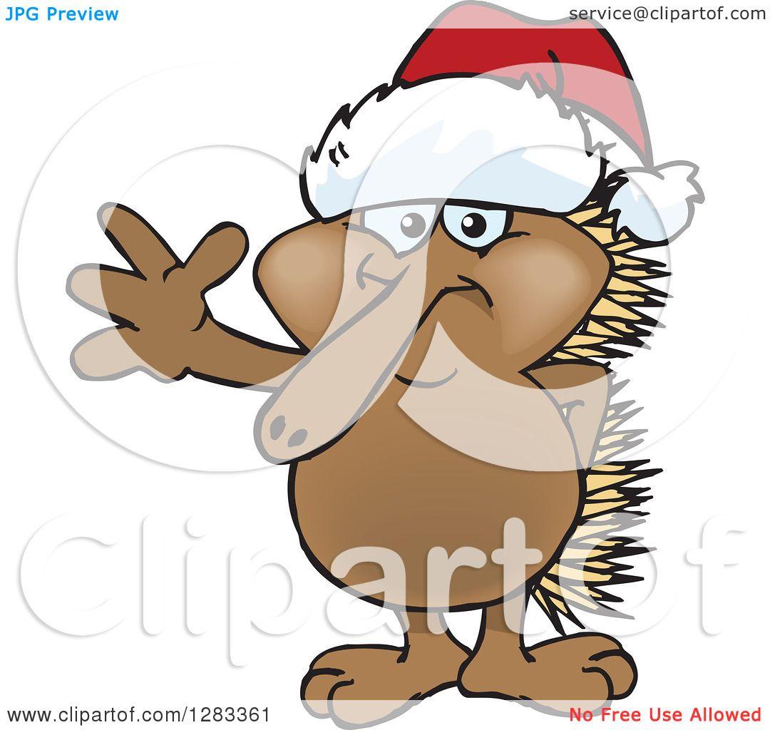 1080x1024 Clipart Of A Friendly Waving Echidna Wearing A Christmas Santa Hat