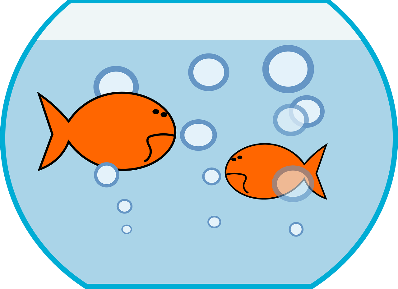 1280x930 Fish Bowl Clipart Fish Pond Pencil And In Color Bowl