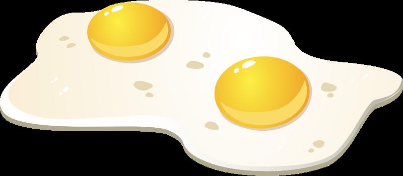 800x350 Free Egg Egg Clip Art Clipart Image 13
