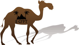 300x174 Free Camel Clipart Image 0515 1011 2419 4557 Acclaim Clipart