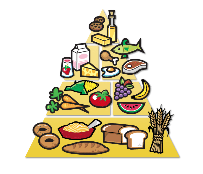 687x592 Free Clipart Of Food Pyramid