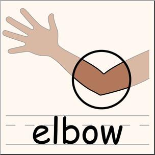 304x304 Clip Art Parts Of The Body Elbow Color I Abcteach