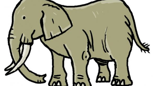 585x329 Easy Pictures Of Elephants For Kids 25 Amazing Facts
