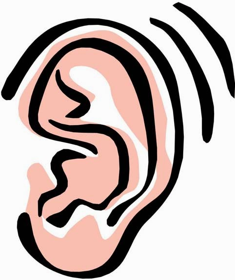 482x574 Collection Of Ear Clipart High Quality, Free Cliparts