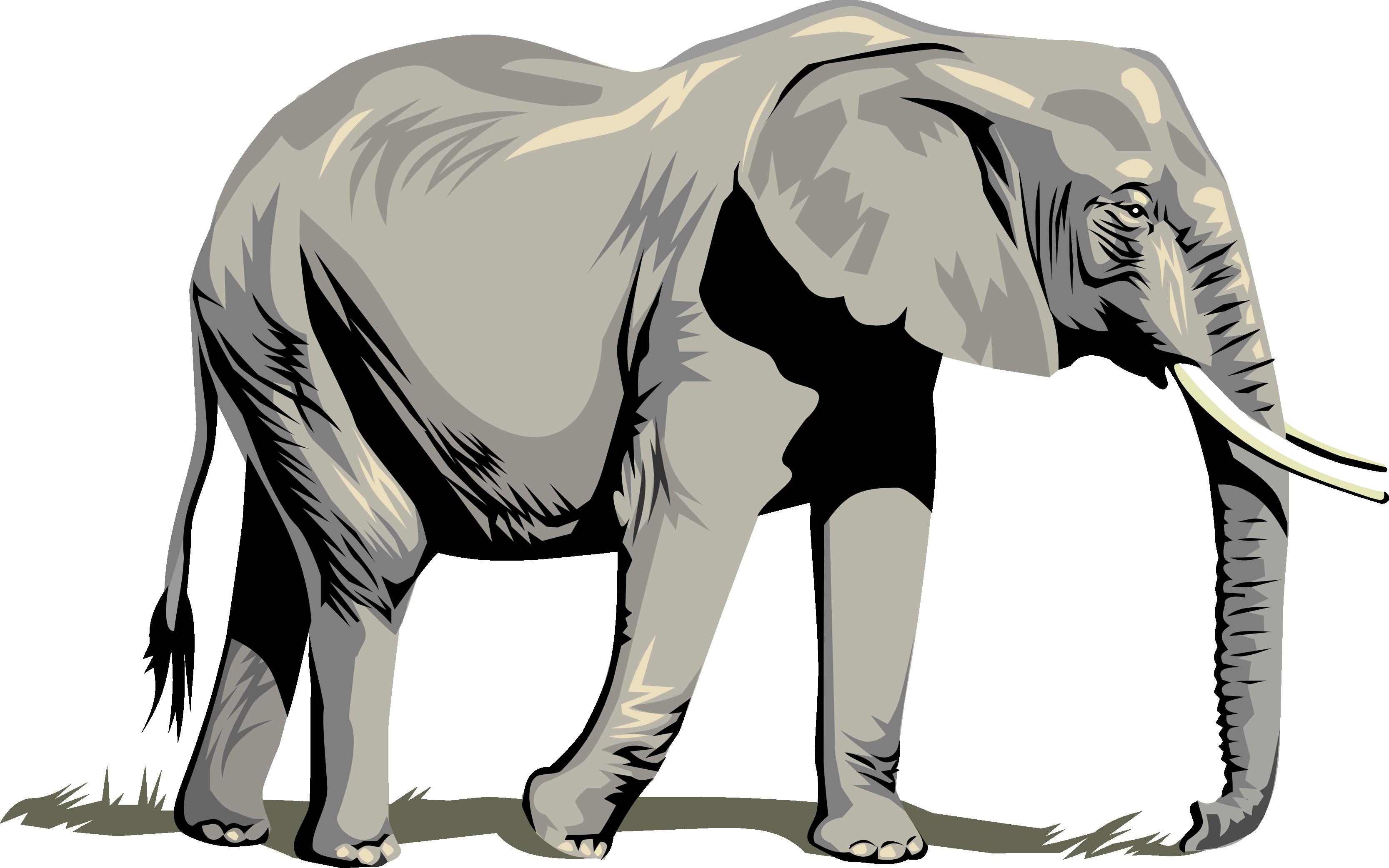 3333x2084 Clip Art Clip Art Of An Elephant