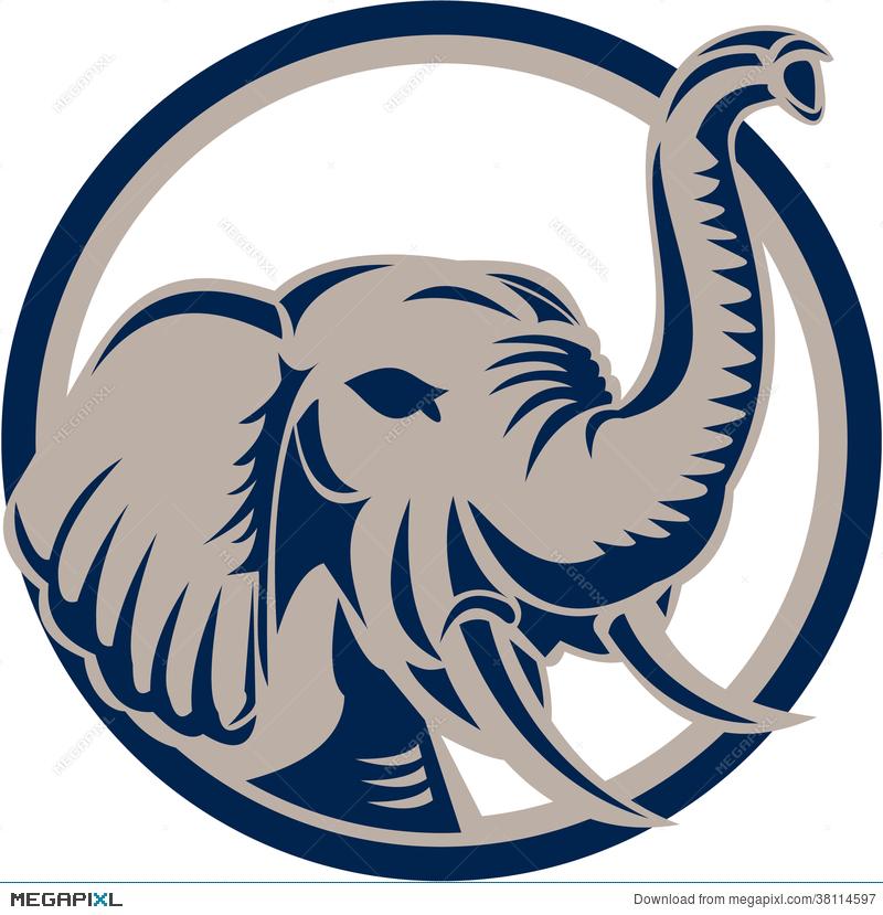 800x829 Elephant Head Front Retro Illustration 38114597