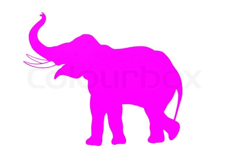 800x533 Clipart Elephant Trunk Up