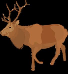 273x299 Reindeer 5 Clip Art