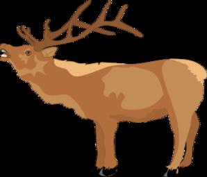 298x255 Reindeer Mooing Clip Art