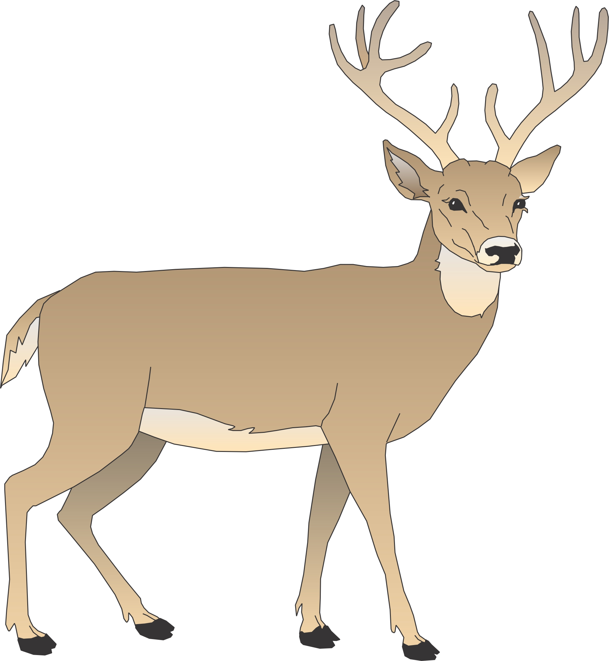 1946x2112 Cartoon Pictures Of Deer Free Download Clip Art Free