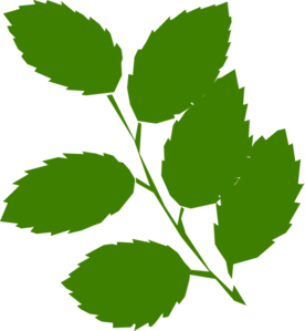 276x299 Green Leaves Clip Art