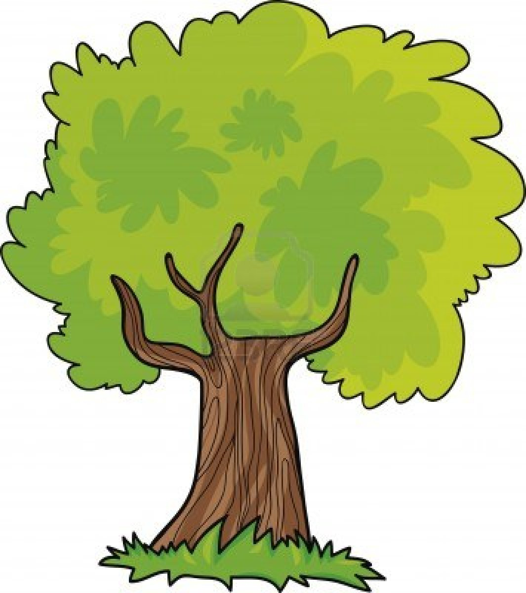 1065x1200 Jungle Tree Clipart