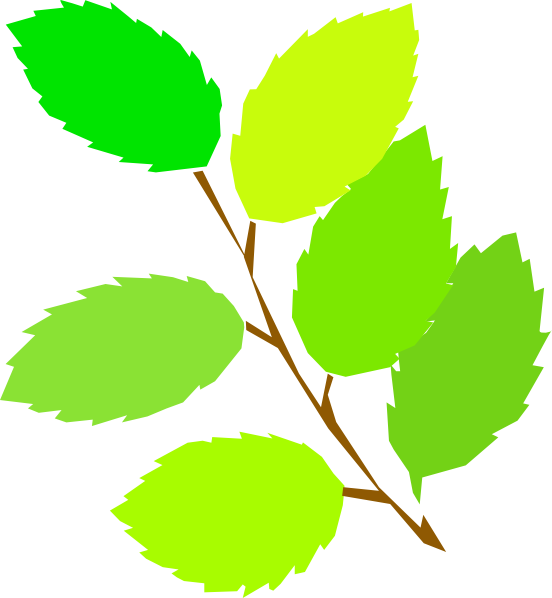 552x598 New Leaves Spring Clip Art Free Vector 4vector