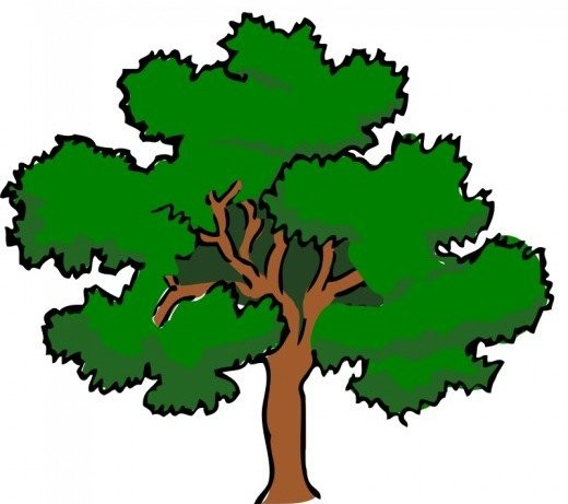 520x461 Tree Clip Art 175 Free Clip Art Trees Hubpages