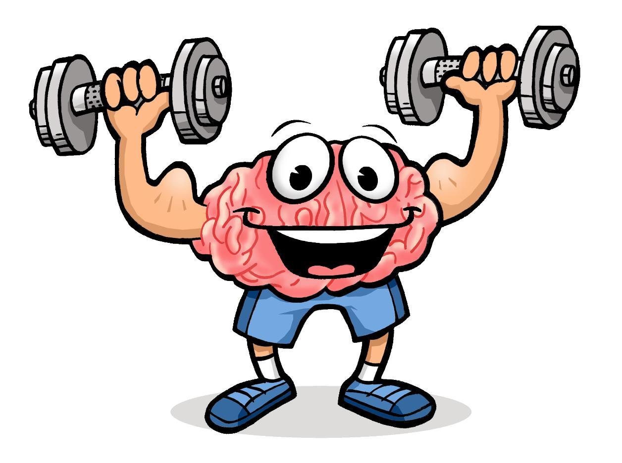 1256x936 Brain Clipart For Kids