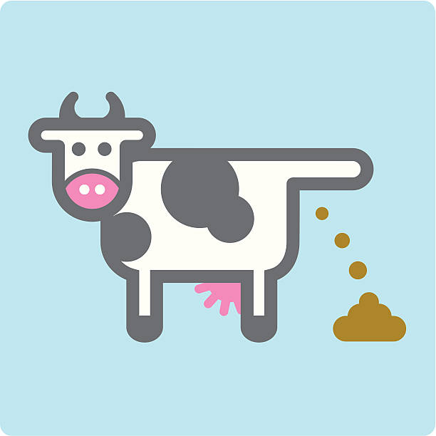 612x612 Collection Of Cow Poop Clipart High Quality, Free Cliparts