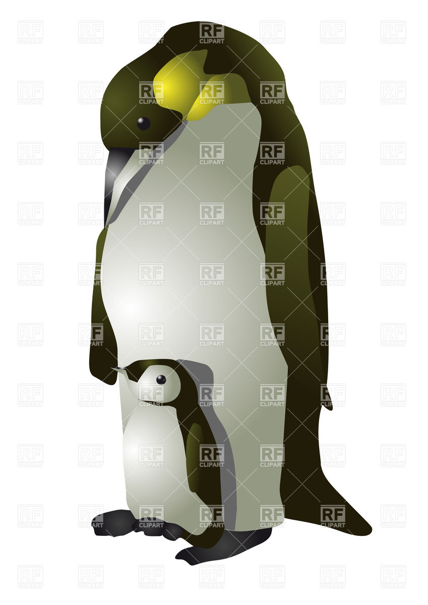 849x1200 Emperor Penguin Royalty Free Vector Clip Art Image
