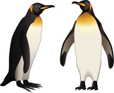 400x328 Penguin Clipart Page 2 Clipartaz Free Clipart Collection