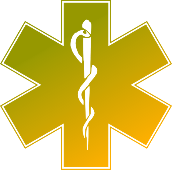 600x594 Star Of Life Clipart